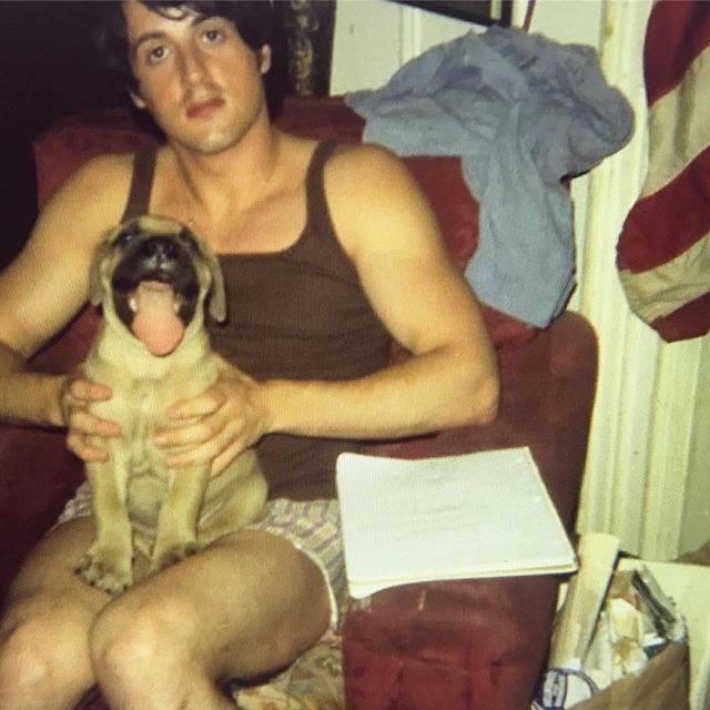 Silvester Stallone.jpg