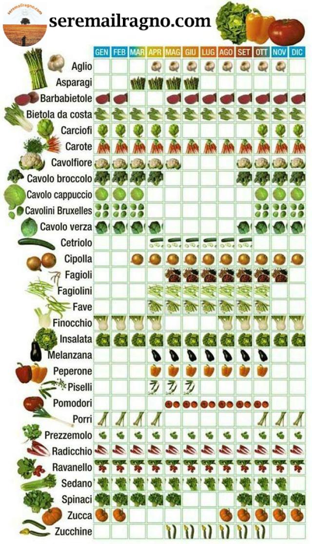 verdura di stagione.jpg