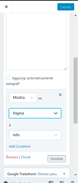 visibilità in wordpress condizione